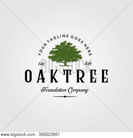 Vintage Oak Tree Logo Retro Illustration Emblem Label Design