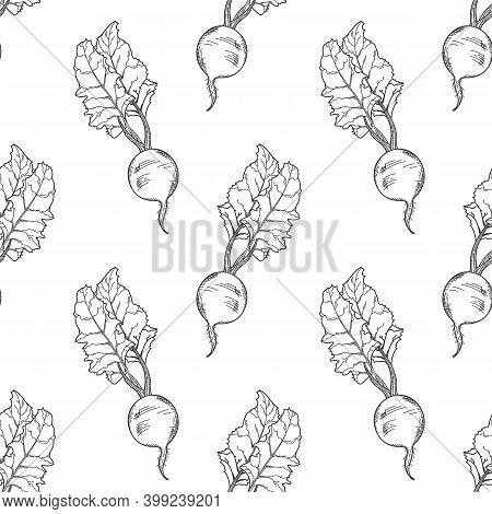 Hand-drawn Beetroot Seamless Pattern. Black And White Vector Illustration.