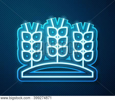 Glowing Neon Line Cereals Set With Rice, Wheat, Corn, Oats, Rye, Barley Icon Isolated On Blue Backgr