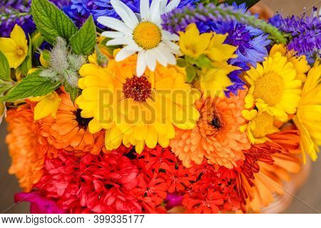 A multi-colored bouquet of wildflowers. Chamomile, cornflowers, calendula, poppy seeds. Flowers are like a rainbow. Bright summer bouquet. Spring flowering.