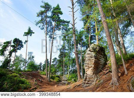 Landscape in nature park  Prachovske skaly, Bohemian Paradise (Cesky Raj), Czechia.