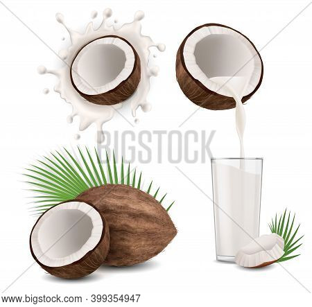 Realistic Detailed 3d Brown Exotic Coconut Products Set. Vector Illustration Of Coco Milk Poured Int