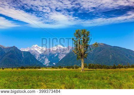 The most beautiful nature in the world. New Zealand, South Island. On the way to Lake Matheson. Mount Cook and Mount Tasman. Magnificent journey to distant lands