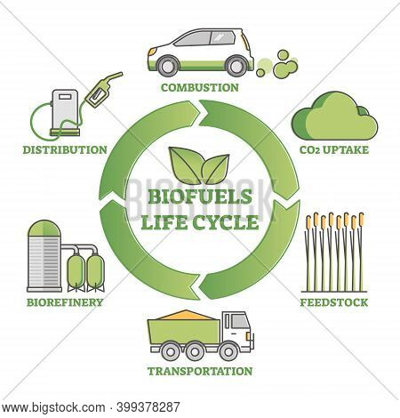 Biofuel Life Cycle Diagram As Production, Consumption Process Outline Concept