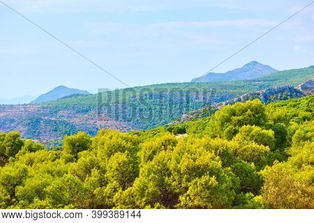 View of Aegina Island near Agia Marina, Greece. Greek country landscape