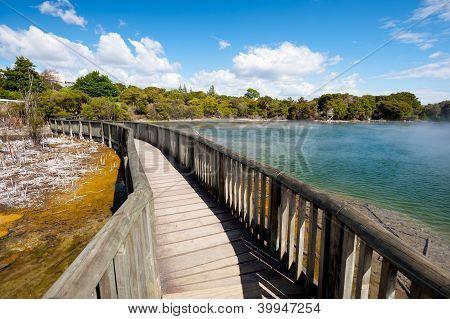 Kuirau Park, Rotorua, New Zealand