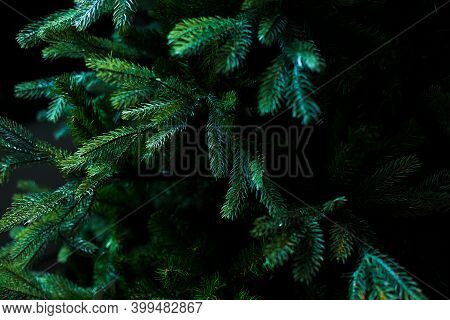Dark Green Fir Branches. Artificial Plastic Christmas Tree As Real. Natural Background For Adding Te