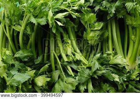 Fresh Green Celery As Background, Closeup View