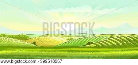 Meadow Hills With Vegetable Gardens And Fields. Rangelands And Pastures. Rural Landscape. Out-of-tow