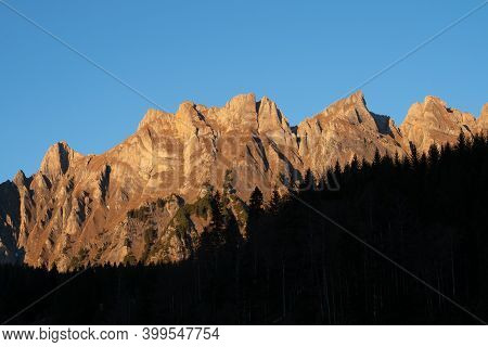 A Dark Coniferous Forest In Front Of Swiss Peaks On A Late Autumn Afternoon