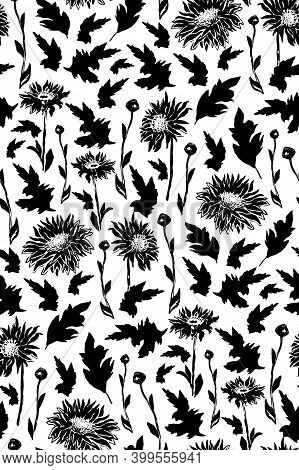 Chrysanthemum Seamless Pattern With Black Silhouettes Of Flowers In Full Bloom. Freehand Floral Orna