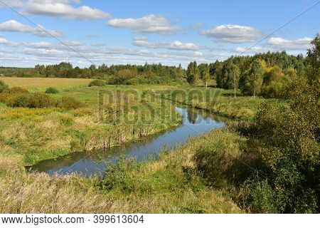 Small River In A Forest With Green Swamp Water In Summer Season. Wetlands Declining And Under Threat