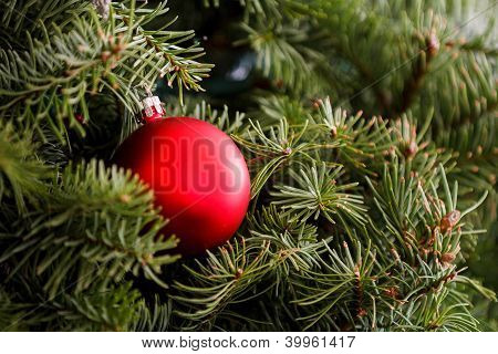 Christmas Ornament Is On The Treet
