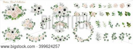 Set of floral elements. anemone ranunculus rose peony flowers, eucalyptus branches wreath green leaves and flowwers. Vector arrangements for greeting card or weddong invitation design