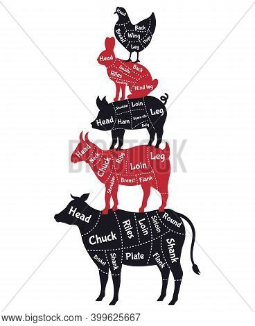 Meat Cuts Poster. Vintage Butcher Shop Meat Cuts Schemes, Cow, Pork, Rabbit And Chicken. Butcher Sho