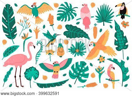 Exotic Leaves And Birds. Tropical Leaves, Flowers And Fauna Birds, Parrot, Pink Flamingo And Toucan.