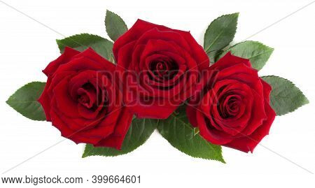 Red Rose Flowers And Leaves Arrangement Isolated On White Background, Top View, Design Element For V