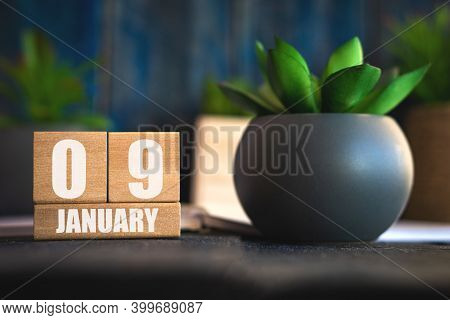 January 9th. Day 9 Of Month, Cube Calendar With Date And Pot With Succulent Placed On Table At Home