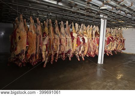 Storage Of Cold Meat In Meat Production. Meat Industry Or Factory.