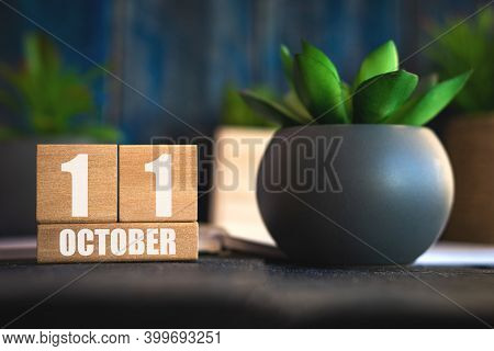 October 11th. Day 11 Of Month, Cube Calendar With Date And Pot With Succulent Placed On Table At Hom