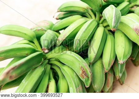 Green Bananas Ripen On A Branch. Organic Bananas Grow On The Banana Tree.