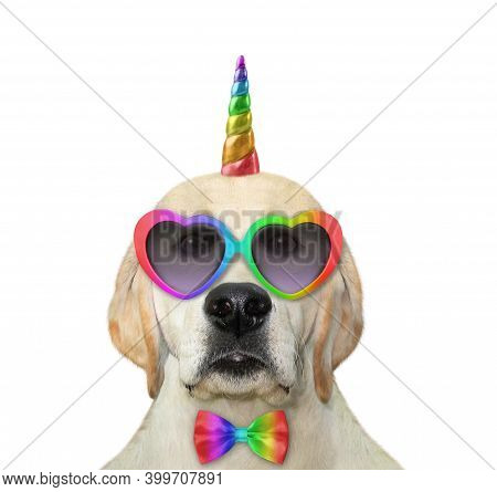 A Dog Unicorn In A Bow Tie And Heart Shaped Sunglasses. White Background. Isolated.