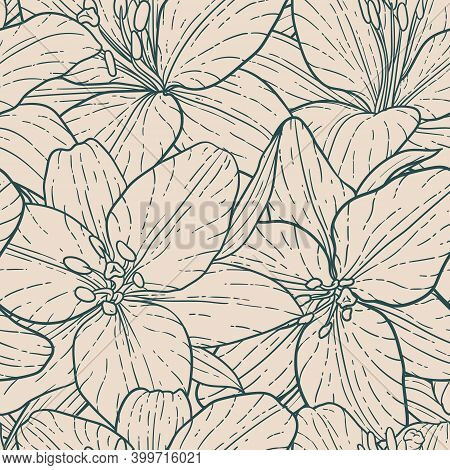 Seamless Pattern, Beautiful Monochrome Vintage Lily. Hand-drawn. Design Greeting Card And Invitation