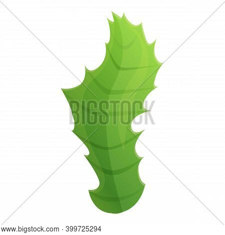Thistle Leaf Icon. Cartoon Of Thistle Leaf Vector Icon For Web Design Isolated On White Background