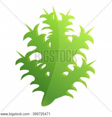 Thistle Scotland Plant Leaf Icon. Cartoon Of Thistle Scotland Plant Leaf Vector Icon For Web Design