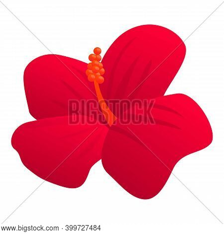 Aroma Hibiscus Icon. Cartoon Of Aroma Hibiscus Vector Icon For Web Design Isolated On White Backgrou