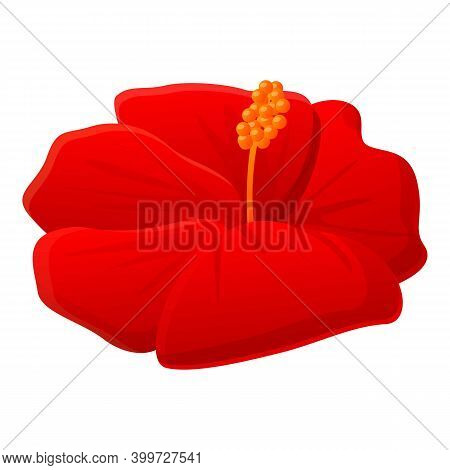 Mallow Hibiscus Icon. Cartoon Of Mallow Hibiscus Vector Icon For Web Design Isolated On White Backgr