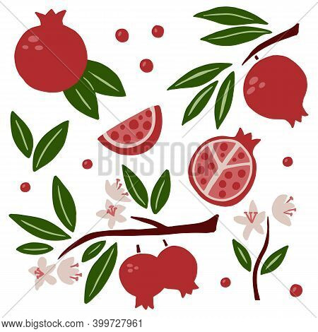 Pomegranate Set. Exotic Tropical Red Fresh Fruit, Whole Juicy Pomegranates With Green Leaves And Flo