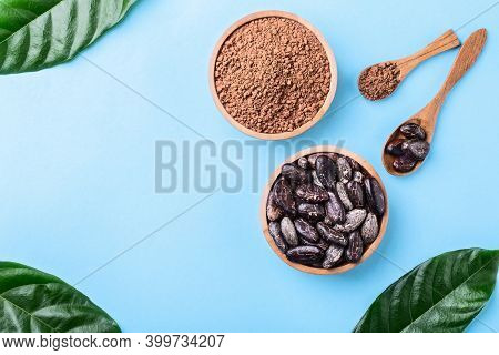 Cacao Powder And Whole Cacao Beans In Wooden Bowls With Original Fresh Leaves On Blue Close-up Copys
