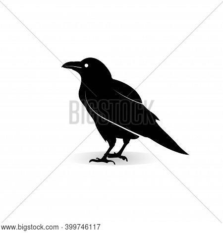 Illustration Raven Logo Icon Vector Design Template