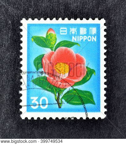 Japan - Circa 1980 : Cancelled Postage Stamp Printed By Japan, That Shows Camellia Flower, Circa 198