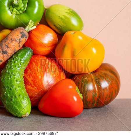 Still Life Composed Of A Rich Crop Of Fresh Vegetables. Farm Tomatoes Of Various Grade, Bell Peppers