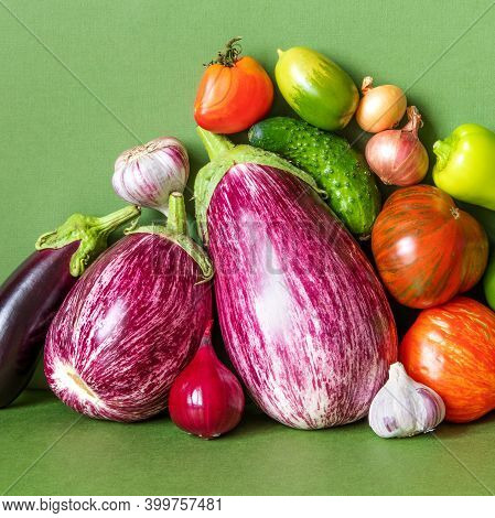 Still Life Composed Of A Rich Crop Of Fresh Vegetables. Farm Aubergine Eggplants, Tomatoes Of Variou