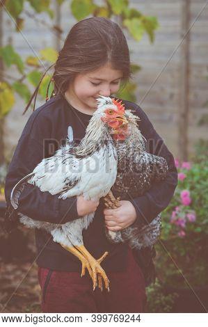Little Girl In Black Top Holding Cream Crested Legbar Cockerels
