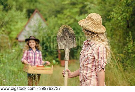 Sisters Helping At Backyard. Child Friendly Garden Tools Ensure Safety Of Child Gardener. Gardening