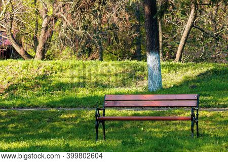 Empty Wooden Bench In The Park. Sunny Weather On Spring Or Summer Day. Green Grass On The Lawn. Rela