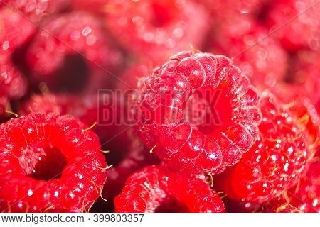Ripe Raspberries Macro Shot Wallpaper. Selective Focus, Fruit Abundance Pattern Background. Summer V