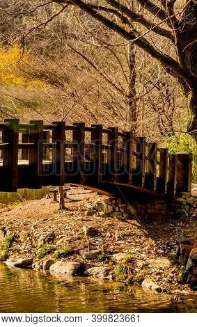 Wooden Footbridge Over Small Stream On Sunny Day In Woodland Park.