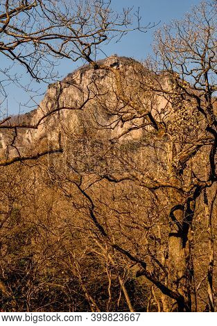 Uplifted Granite Mountain Peak Behind Autumn Leafless Trees Branches.