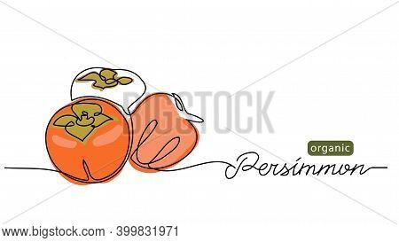 Persimmon Fruits Sketch Vector Illustration For Label, Background. One Line Drawing Art Illustration
