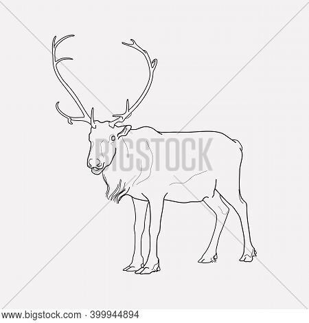 Reindeer Icon Line Element. Vector Illustration Of Reindeer Icon Line Isolated On Clean Background F