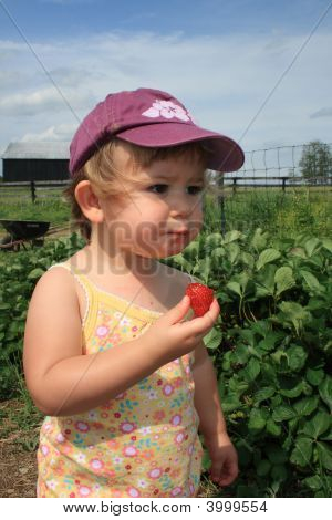 Eating A Strawberry