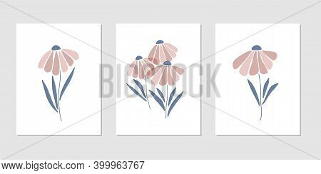 Chamomile Silhouette Vector Illustration. Contemporary Botanical Print, Modern Poster For Home Decor