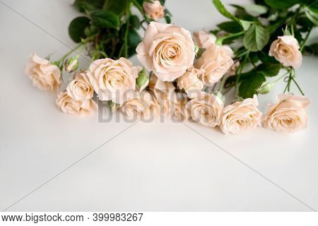 Bouquet Of Pale Yellow Roses Scattered On Light Background.