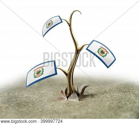 3d Illustration. 3d Sprout With West Virginia Flag On White