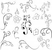 Elements of flower ornament. Isolated on an white background poster